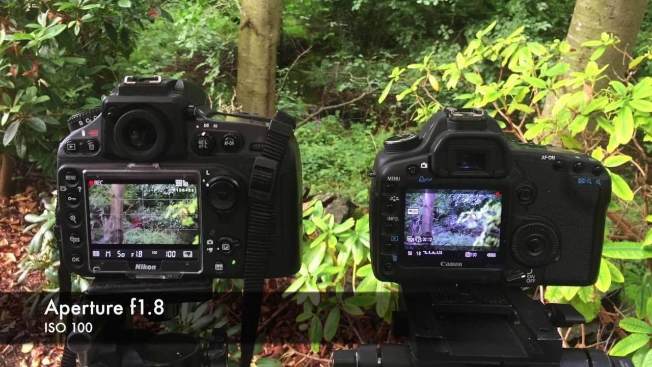 Canon EOS 5D Mark IV Vs Nikon D850 Review